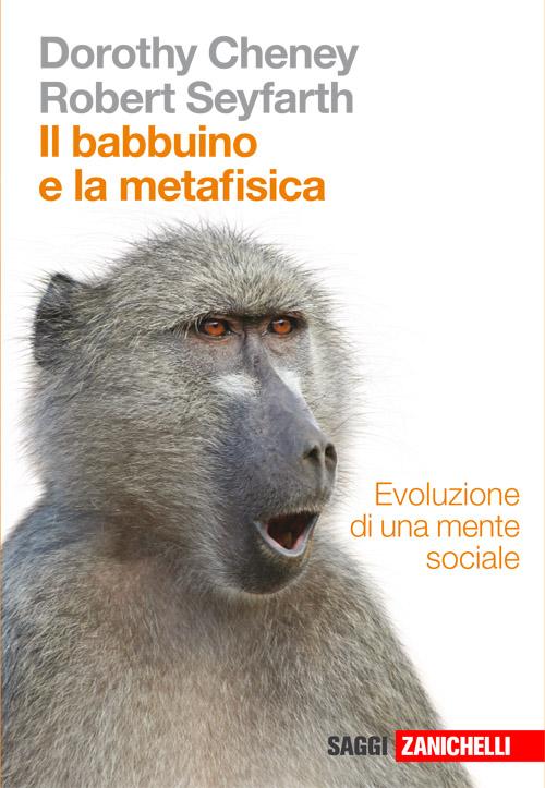 Il babbuino e la metafisica