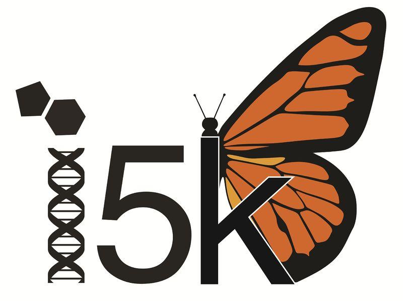5000 insetti messi a nudo