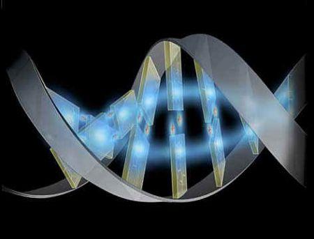 Il razzismo nella genetica