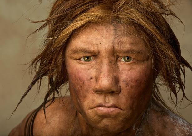 estinzione dei neanderthal