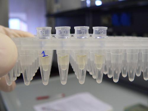 Quanto ci costa la cattiva scienza