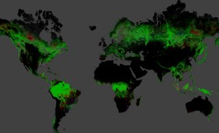Cartina Satellitare Mondo.Google Mappa La Deforestazione Globale Galileo