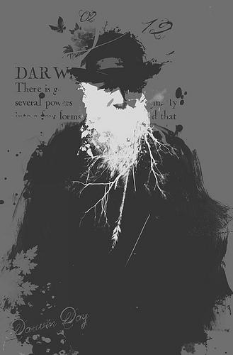 Darwin Day, festeggialo così