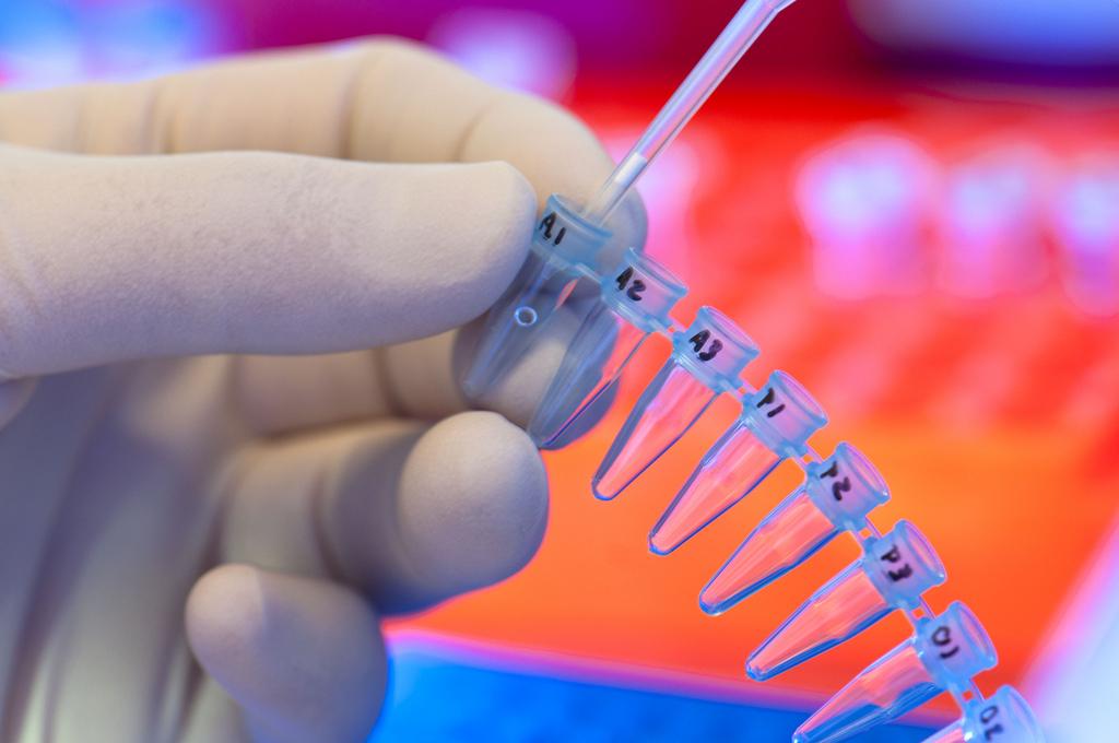 Un nuovo modo per produrre cellule staminali embrionali
