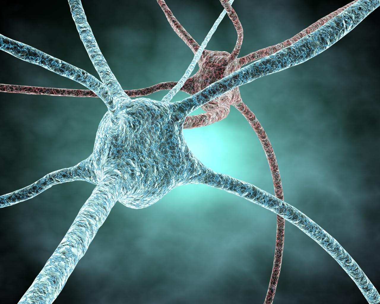 Curare il Parkinson con le cellule staminali fetali
