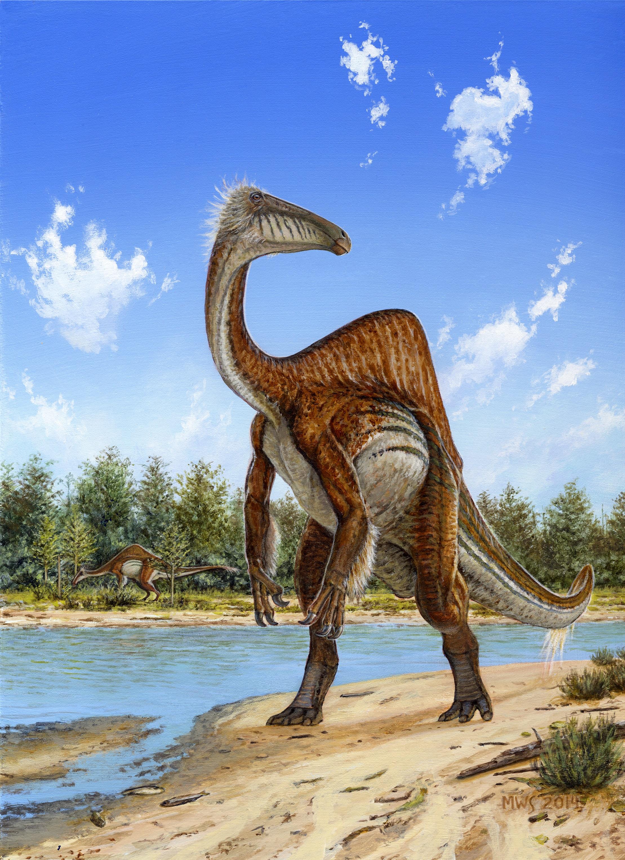 Il dinosauro con la gobba