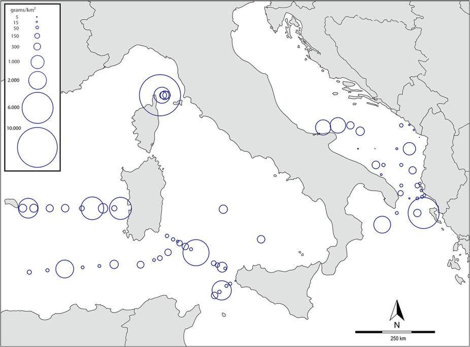 mappa-micropl