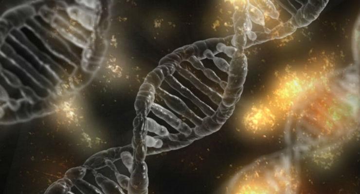 dna epigenetica