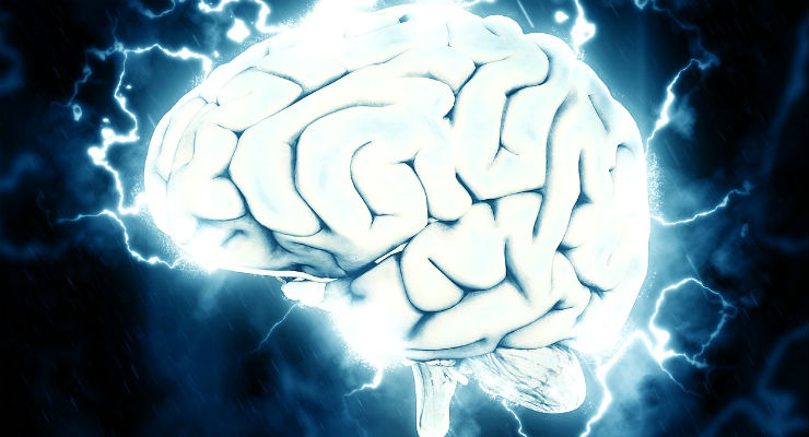 cervello (Foto via Pixabay)