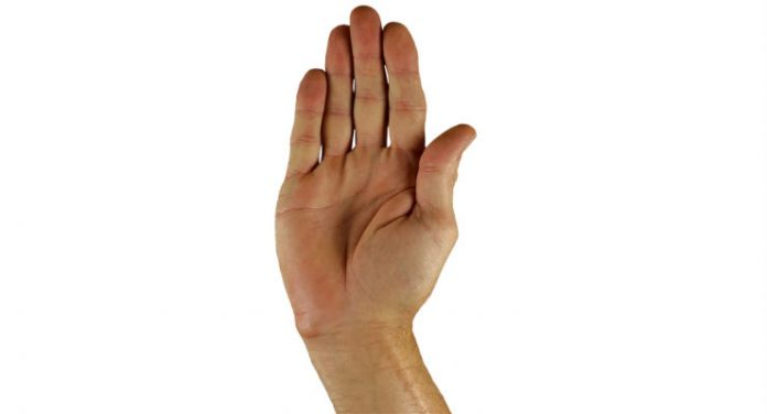 lingua segni