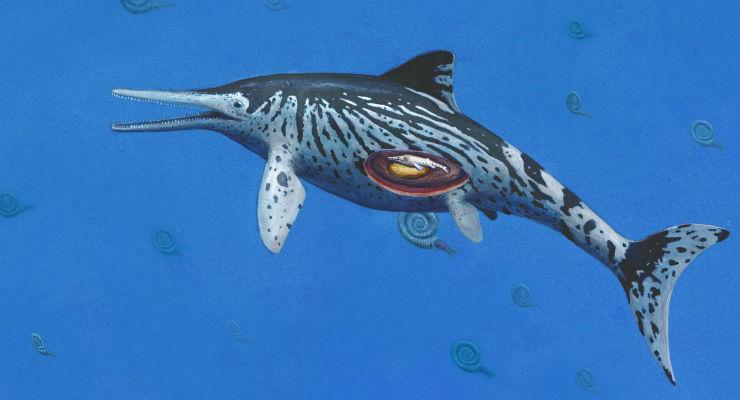 ittiosauro