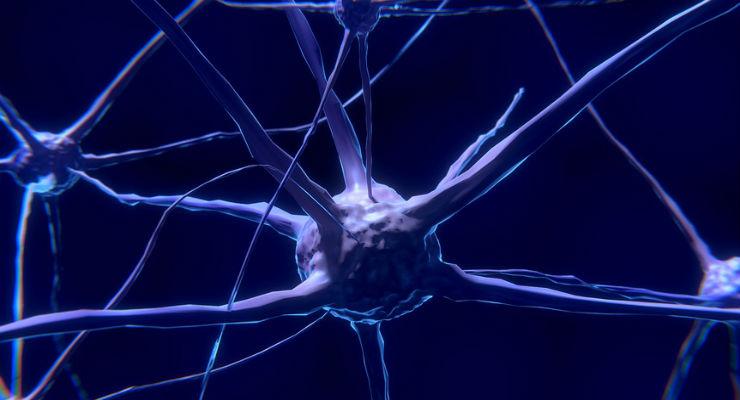 neuroni (Foto via Pixabay)