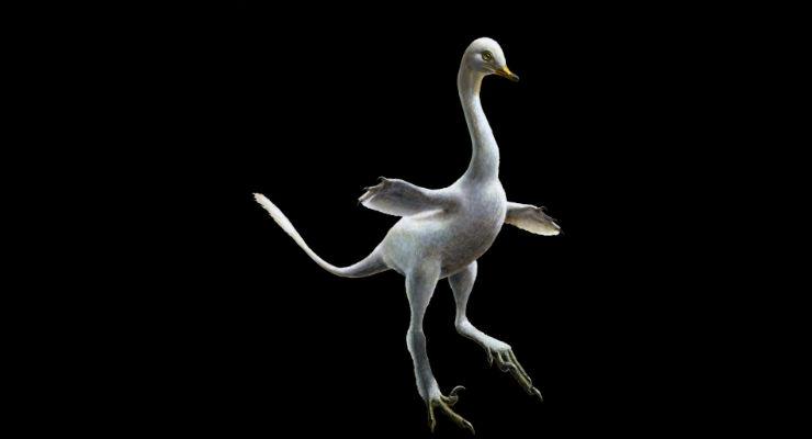 dinosauro papero
