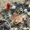"""Enea: """"Entro il 2050 nel mare avremo più plastica che pesci"""""""