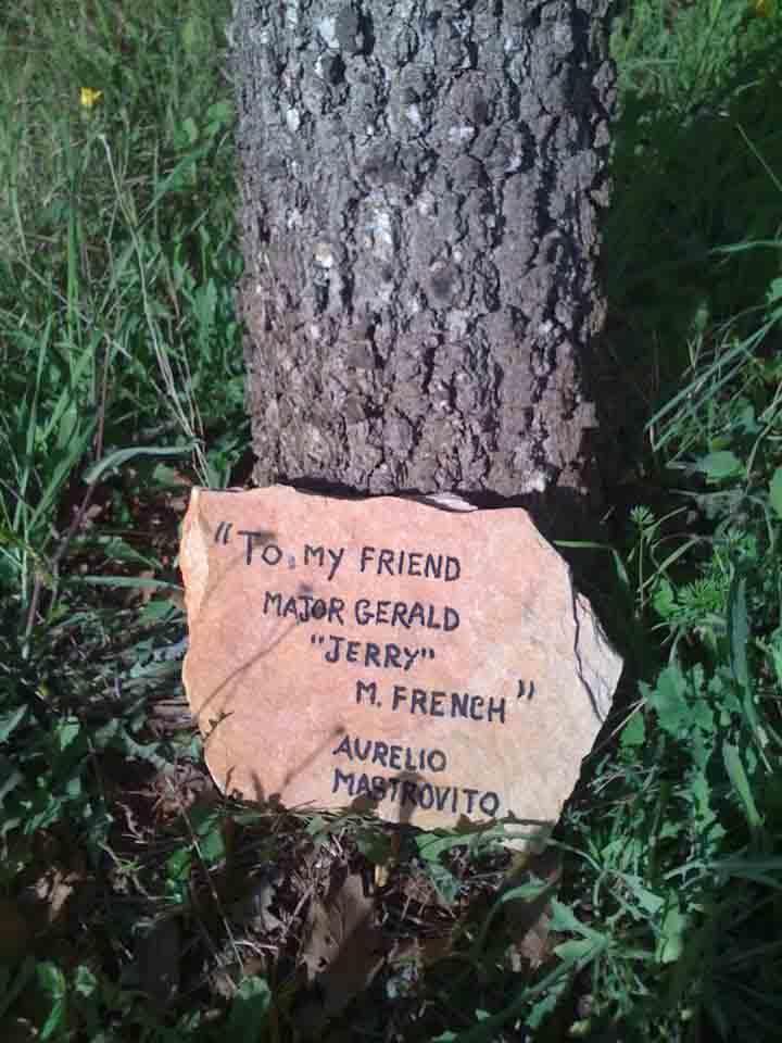 dedica albero