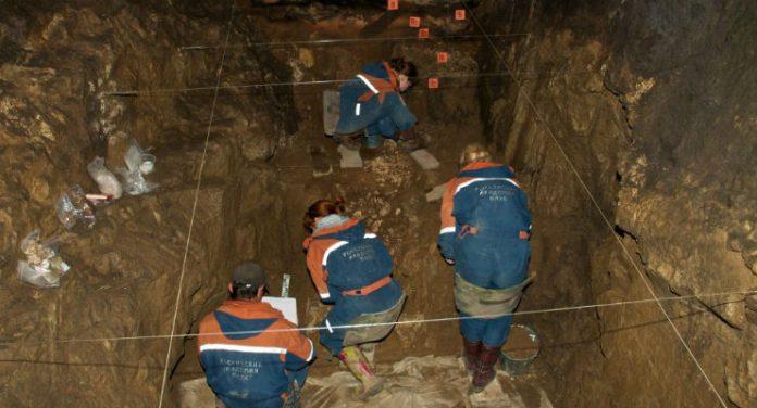 denisova neanderthal