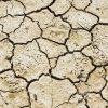Quanto è durata la siccità che ha fatto collassare la civiltà Maya?
