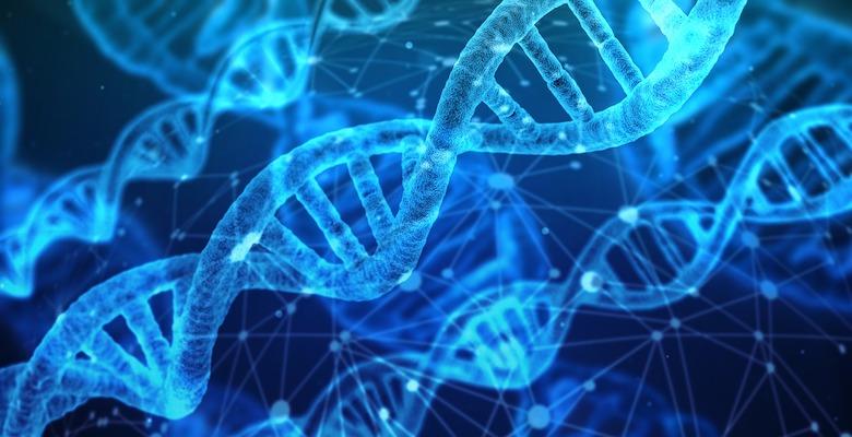 bambini geneticamente modificati