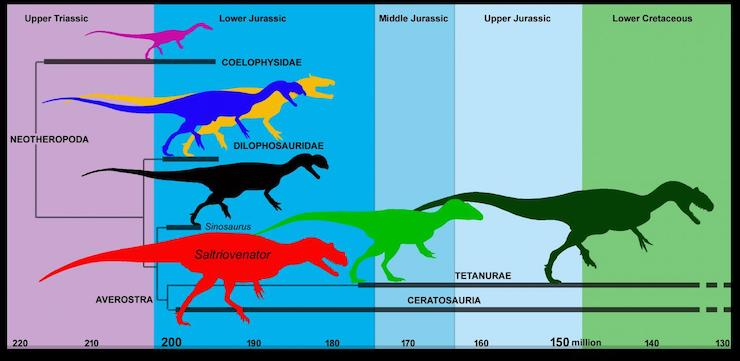 Ceratosauri
