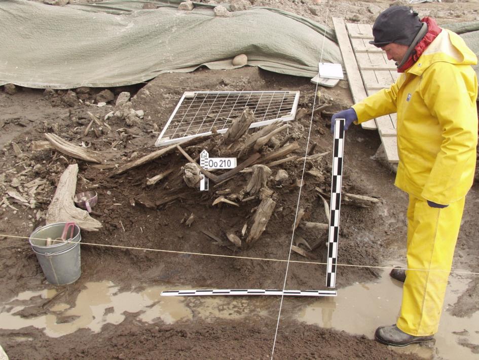 Zhokhov Excavations 0_P6290013 - Copia