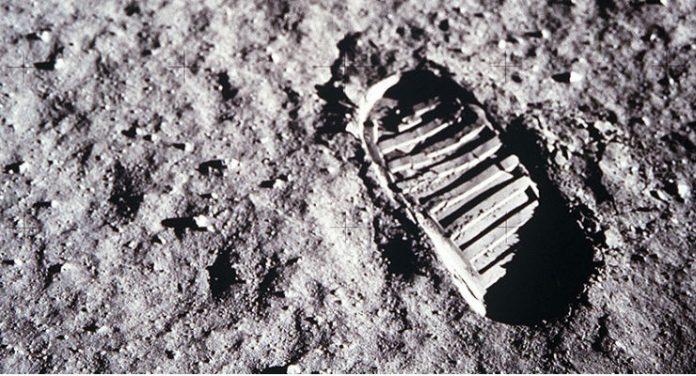 prima donna luna