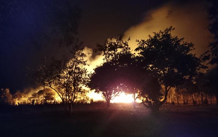 terra antropocene incendi