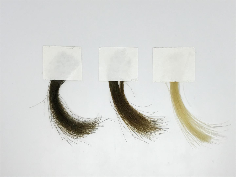 capelli tinte colore cuticola pigmento melanina