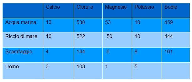 composizione isotopi organismi viventi