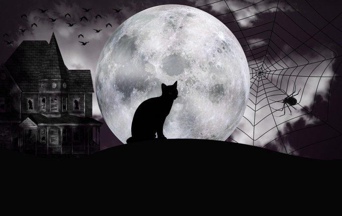 halloween luna blu luna piena